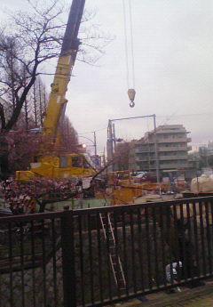 妙正寺川護岸工事